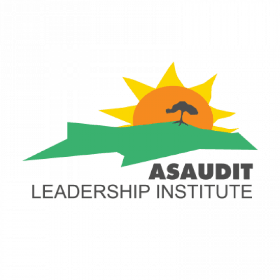 ASAUDIT Leadership Institute